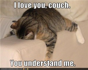 That was me - face planted on the couch. Daily...