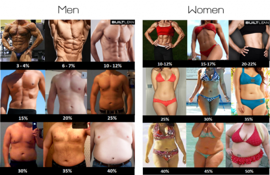 Remember the difference between men and women is that a man's essential body fat level is much lower than a woman's.